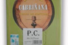 Cabriñana 2